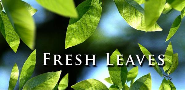 Fresh Leaves android