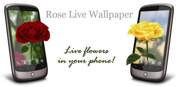rose live wallpaper android
